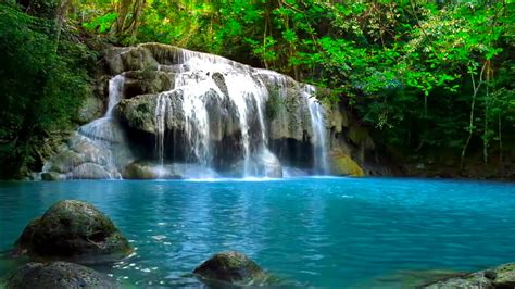 waterfall jungle sounds relaxing tropical rainforest nature sound singing birds ambience