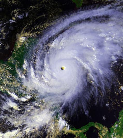 what is a hurricane l hurac 224 mitch viquip 232 dia l enciclop 232 dia lliure