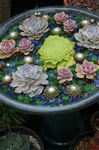succulent container gardens some design guidance for