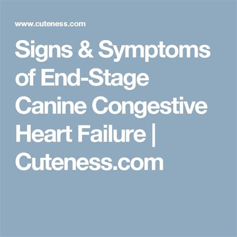 congestive failure stages 1000 ideas about stages of failure on cardiac nursing