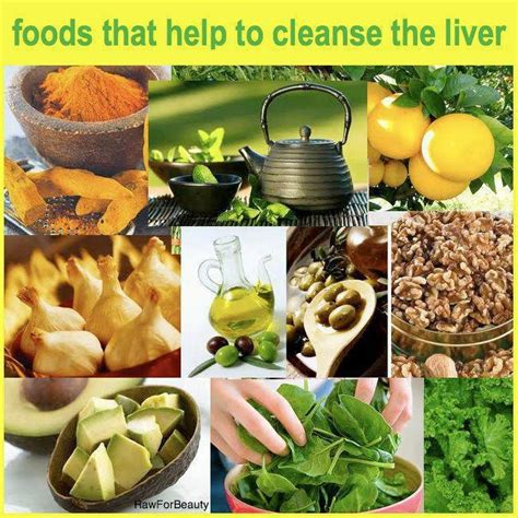 Foods That Aid Liver Detox by Foods That Help To Cleanse The Liver Health News Home