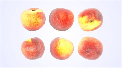 My Fruits Model Peach | my fruits model peach my fruits model peach peaches vizpark