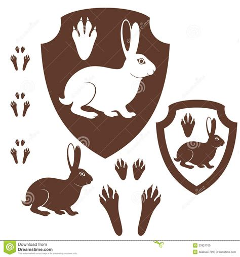hare paw print royalty free stock photo image 33921765
