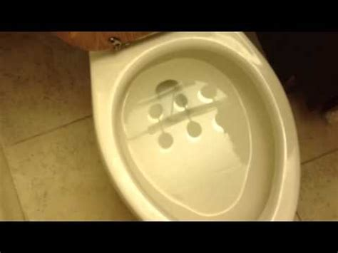 Eco Flush Toilet Not Flushing by Eco Flush