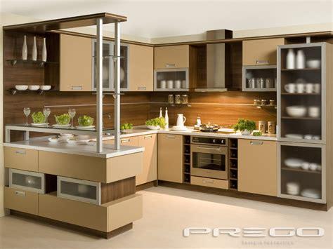 Design Of Kitchen Cabinets Pictures elegance prego