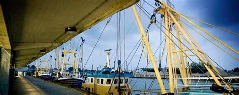 boten nieuwpoort boten vis en haven in nieuwpoort visitflanders