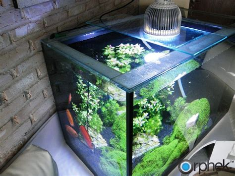 Jual Lu T5 Aquascape orphek pr72 planted aquarium led lighting