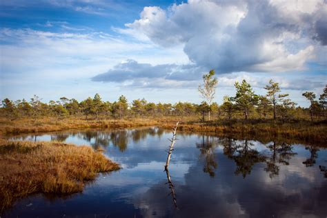 bootje everglades travel planning a boating in norfolk trip in 2017