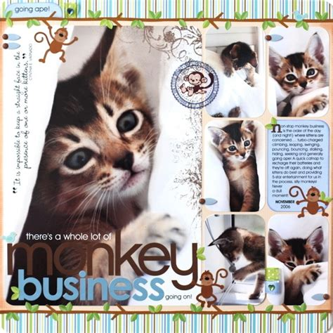 scrapbook layout cat top 25 ideas about zoo scrapbook layouts on pinterest
