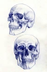skull drawings 1 art pinterest sketching