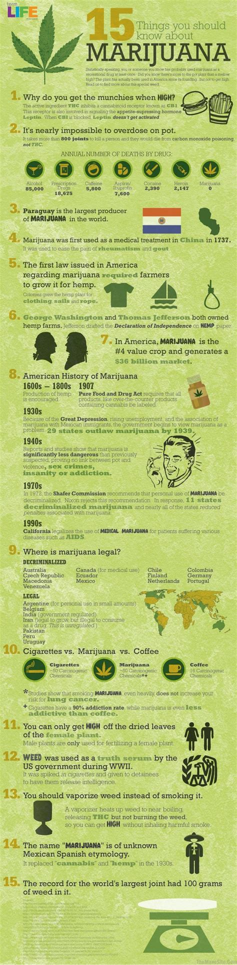 15 things you should know about marijuana positivemed
