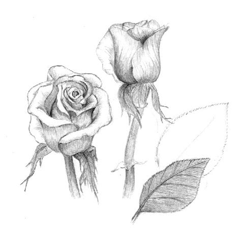 pencil drawing tips pencil wallpapers
