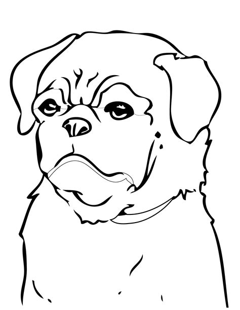 coloring pages of pugs dogs pug dog coloring pages az coloring pages