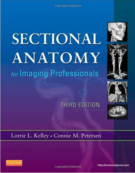 sectional imaging sectional anatomy for imaging professionals