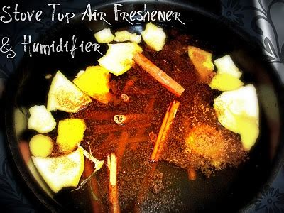 Air Freshener On Stove Stove Top Air Freshener Humidifier Up Or Go Home