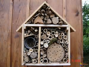 photo maison pour insectes