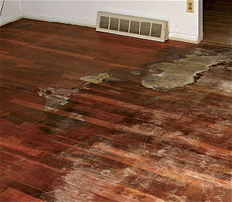 Staining Old Kitchen Cabinets 11 wood flooring problems and their solutions fine