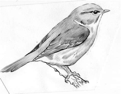 dibujos realistas a lapiz faciles el arte de dibujar a l 225 piz dibujos a lapiz