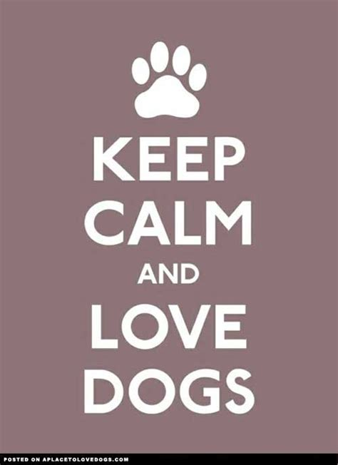at what age do puppies calm animal quotes sayings images page 22