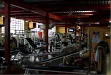 palestre pavia centro palestre gymnasium la tua palestra a pavia