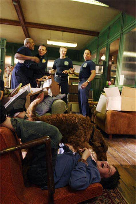 fire house dog firehouse dog movie gallery movie stills and pictures