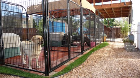 how to kennel a puppy 1000 images about kennels on kennels