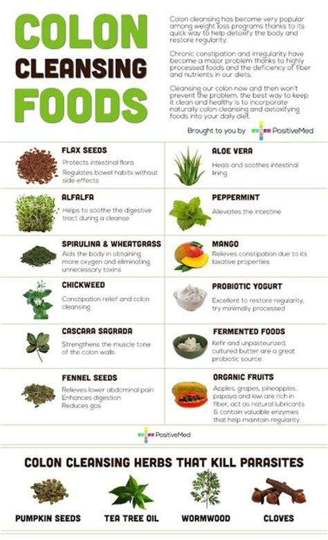 Top Detox Herbs by Weight Loss Best 12 Colon Cleansing Foods 4