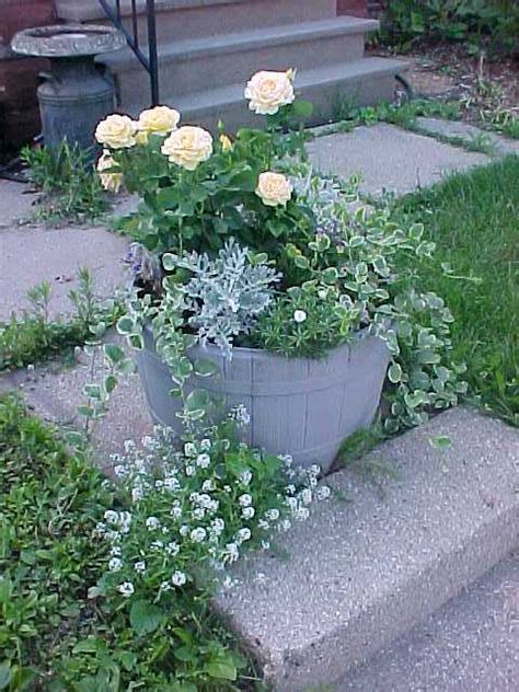 Yard Planters by Front Yard Walk Planter