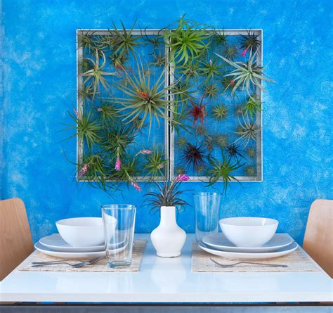 decorative outside wall ideas outdoor wall decor ideas frame plants design milk