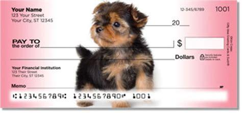 different color yorkies yorkie checks terrier personal checks at yorkiechecks