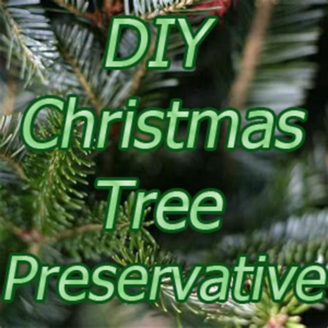 diy christmas tree preservative