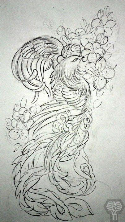 phoenix tattoo vorlagen phönix tattoos ave fenix ave fenix pinterest ph 246 nix grafik kunst