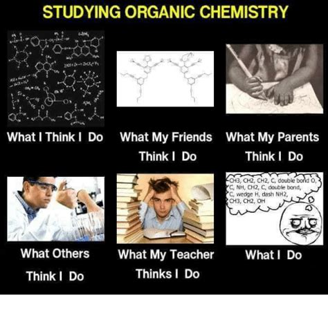Chemistry Memes - orgo memes www imgkid com the image kid has it