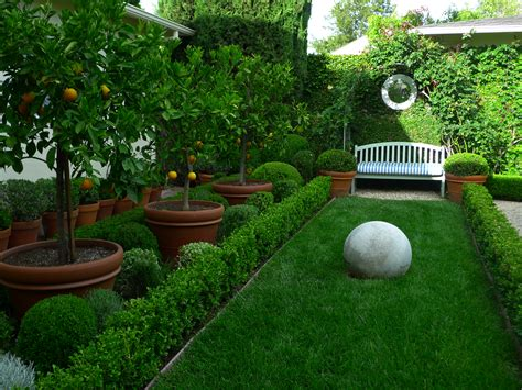 backyard fruit trees what a pretty garden garden pinterest