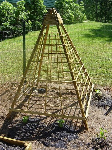 Trellis Gardening Ideas Pickle On A Stick Or Another Cucumber Trellis Idea Pinterest Gardens The Winter And
