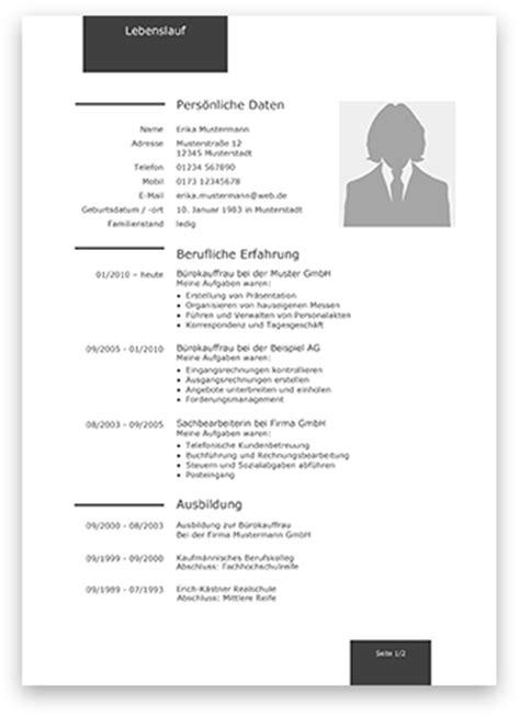 Lebenslauf Vorlage Bank Professionelle Lebenslauf Muster Und Vorlagen 2017