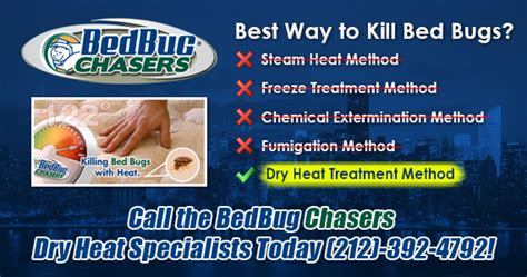 do bed bugs like heat or cold bed bug problems in howard beach ny new york city bed