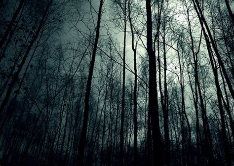 black station ambient creepy horror lost in slender forest audio atmosphere