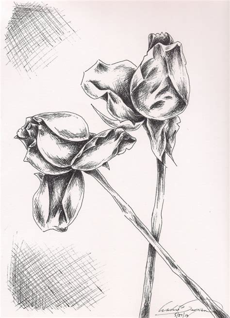 easy flowers drawing with pen drawing art library