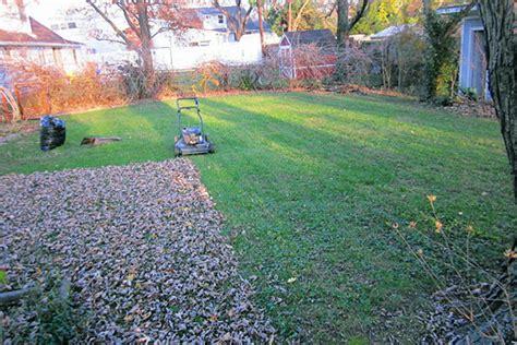 winter lawn care winter lawn care winter lawn maintenance houselogic