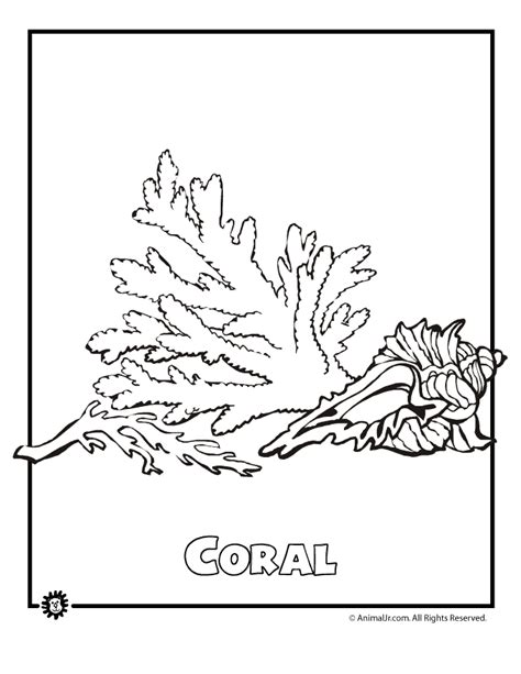 coral coloring pages and printable coloring templates