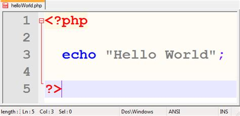 php tutorial urdu 9 output html using echo or print php echo command phpsourcecode net