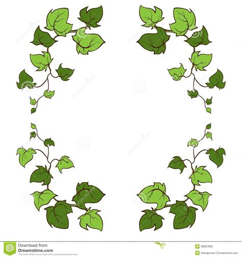 Amazing Clover Garden Center #3: Ivy-vector-hand-drawn-frame-climbing-ground-creeping-woody-plant-38997895.jpg