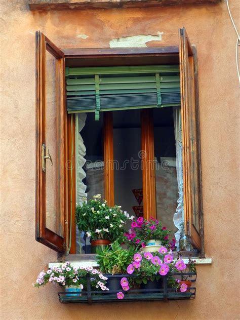 fiori da davanzale moda davanzale della finestra ff21 pineglen