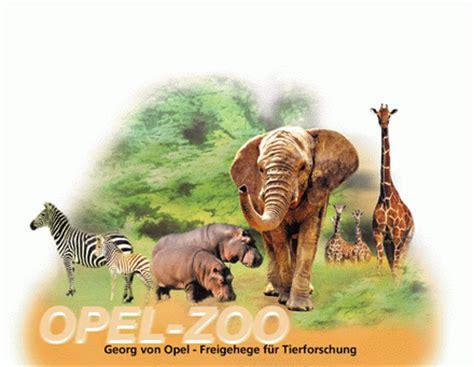 opel zoo testberichte und preisvergleich shops