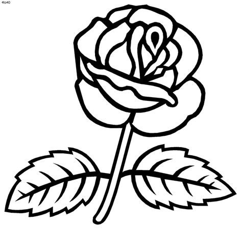 pictures of roses coloring pages coloring pages of roses coloring home
