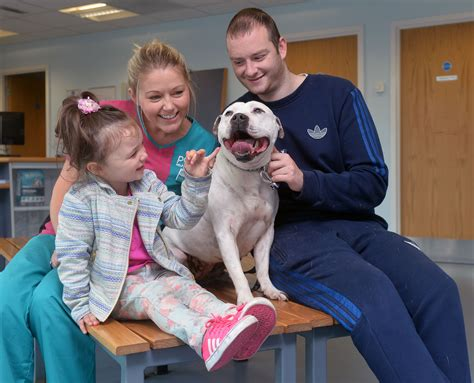 reunited with owner reunited with owner after 3 years jpg