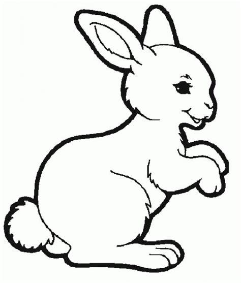 gambar hewan kartun mewarnai belajar mewarnai gambar hewan kelinci lucu untuk anak 20