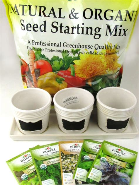 windowsill herb garden kit 100 windowsill herb garden kit grow kits seed u0026