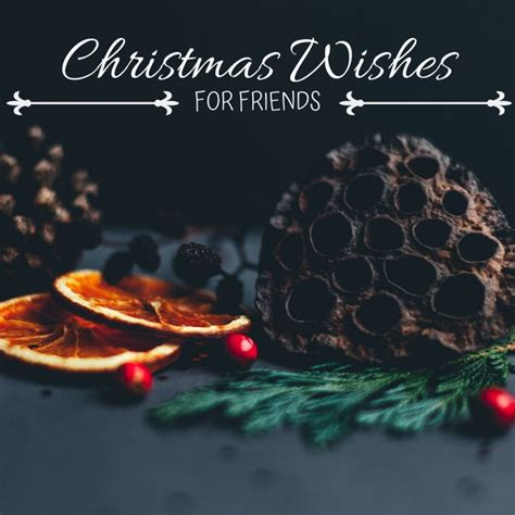christmas card wishes quotes  poems  friends holidappy